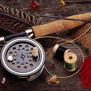 Охотничьи и рыболовные магазины Суны
